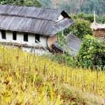 Bung - The Nepal counryside — Stock Photo