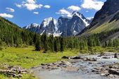 Savlo szavlo valley and rock face - altai mountains russia — Stock Photo