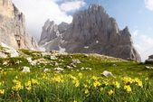 View of cima della madonna in pale di san martino - dolomiti italy — Stock Photo