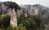 Sandstone rockies and wood in cesky raj — Stock Photo