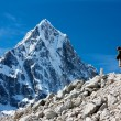 Hiker on mountains - hiking in Nepal - way to everest base camp — Stock Photo