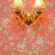 Two lamps on pink seamless floral pattern with roses — Stock Photo