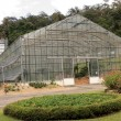Stock Photo: Conservatory Glasshouse