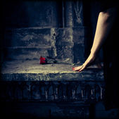 Woman in black dress with red flower on dark background — ストック写真