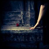 Frau im schwarzen kleid mit roten blüten auf dunklem hintergrund — Stockfoto