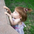 Little girl looking curiously outdoor — Stock Photo