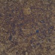 Brown grunge wall texture — Stockfoto