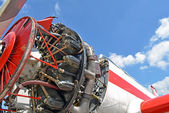 Aircraft piston engine — Stock Photo