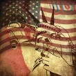 Foto de Stock  : America, grunge background