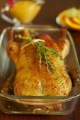 Roast duck with orange and herbs — Stock Photo