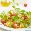 Variegated tomatoes salad with crackers and grated cheese — Stock Photo