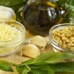 Pesto ingredients — Stock Photo #8015766