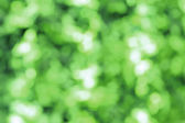 Abstract green blurred bokeh for background use — Stock Photo