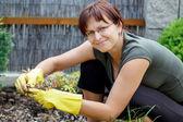 微笑的中年妇女,从事园艺在阳光灿烂的日子 — 图库照片