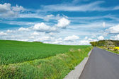 Beautiful summer rural landscape with road — Stock Photo
