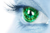 Eye iris and electronic circuit — Stock Photo