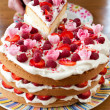 Colorful birthday cake — Stock Photo #9068943