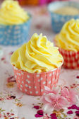 Cupcakes with lemon buttercream — Stock Photo