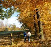 Autumn — Foto Stock