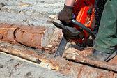 Sucata de um log de uma serra — Foto Stock