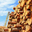 Wood preparation — Stock Photo #10541151