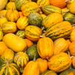Crop of pumpkins — Foto Stock