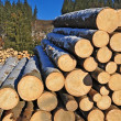 Wood preparation — Stock Photo #8489045