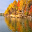 Foto Stock: Autumn on bank of lake