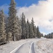 Foto Stock: Road on winter hillside