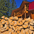 Fire wood against the house — Stock Photo #8921663
