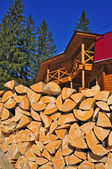 Fire wood against the house — Stock Photo