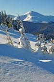 冬季在山中 — 图库照片