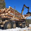 Wood preparation - Stockfoto