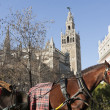 Carriage in Giralda — Stock Photo