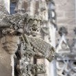 Two gargoyle — Stock Photo
