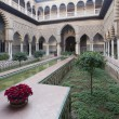 Alcazar garden — Stock Photo #8451290