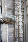Gargoyle on the roof — Stock Photo