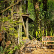 Wooden stairs and benches in jungle — Stock Photo
