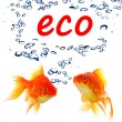 Eco ecology nature or environment concept — Stock Photo