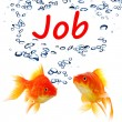 Stock Photo: Find a job concept with goldfish