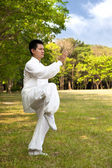 Man and kung fu — Stock Photo