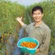 Stock Photo: Successful asian farmer holding tomato on his farm