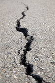 Cracked road — Stock Photo