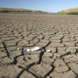 Dry earth, dirt, cracks - Foto de Stock