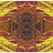 Abstract colorful wallpaper of natural pattern — Stok fotoğraf