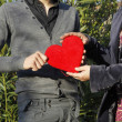 I offer you my heart — Stock Photo