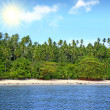 tropical beach — Stock Photo #8570680