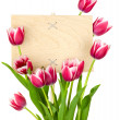 Stock Photo: Beautiful Tulips and Empty Sign for message / wooden panel / iso