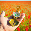 Compass in a Hand / Discovery / Beautiful Day / Red Poppies in N — Stock Photo