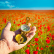 Compass in Hand / Discovery / Beautiful Day / Red Poppies in N — Stock Photo #9278201